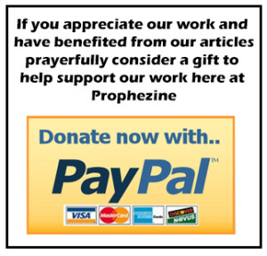 paypal donate button 2