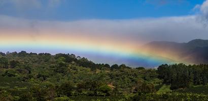 rainbow-costa-rica-410-200