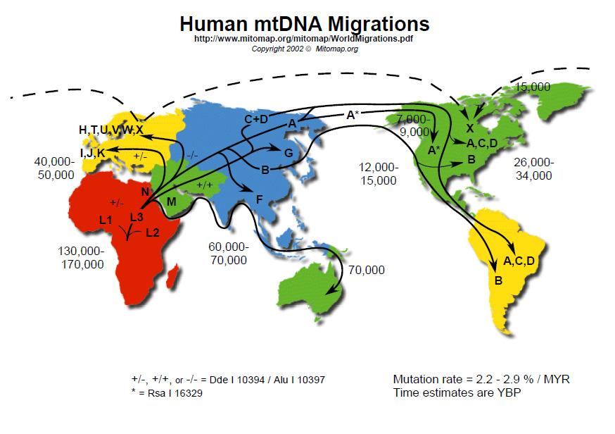 7267human-mtdna-migrations-lge