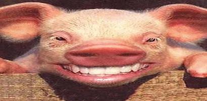 pig-people-410-200
